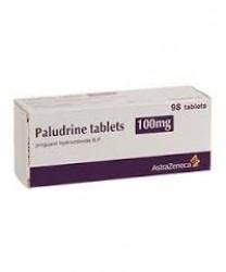 PALUDRINE